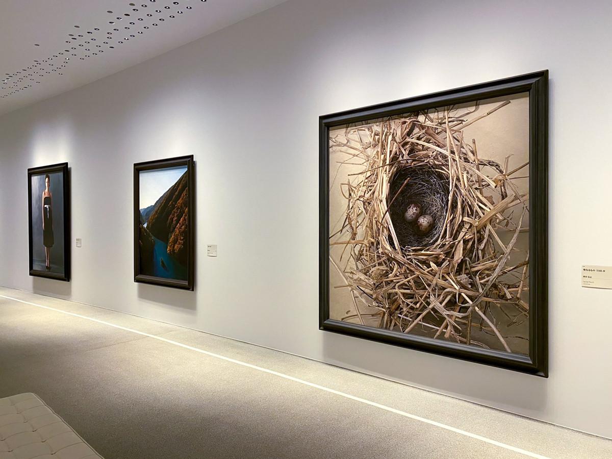 ホキ美術館 ギャラリー3の展示