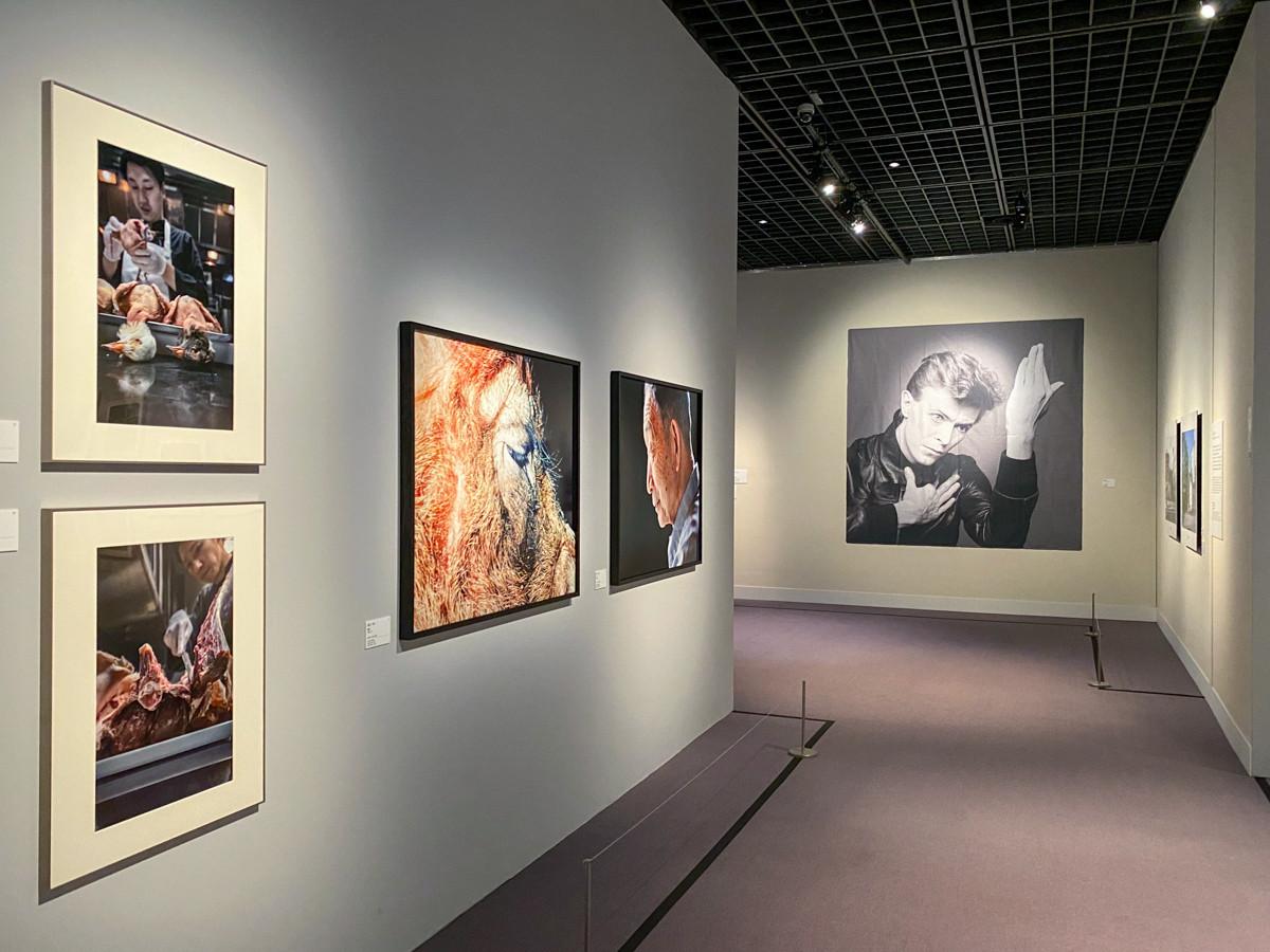 Bunkamura ザ・ミュージアム「東京好奇心 2020 渋谷」 会場風景