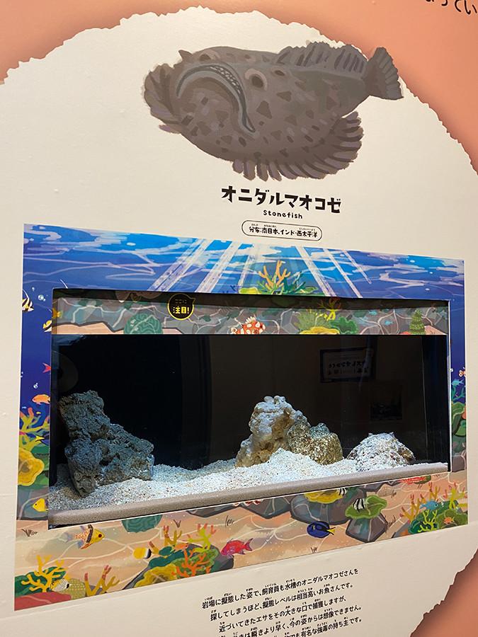 しながわ水族館「絶対に見つからないいきもの展」会場