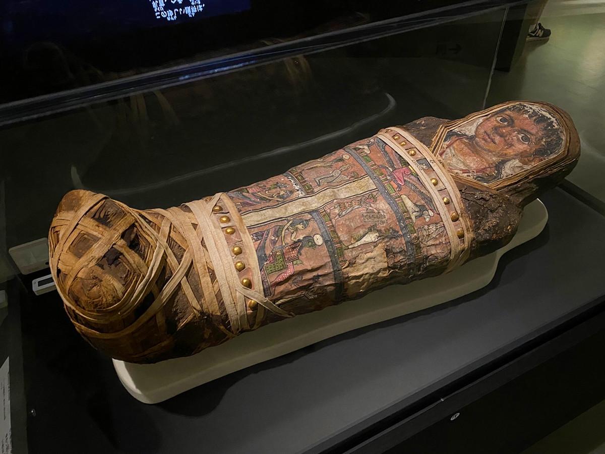 国立科学博物館「大英博物館ミイラ展 古代エジプト6つの物語」会場