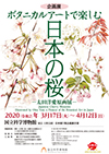 国立科学博物館「ボタニカルアートで楽しむ日本の桜 -太田洋愛原画展-」