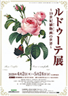 パラミタミュージアム「ルドゥーテ展 ~19世紀植物画の世界~」